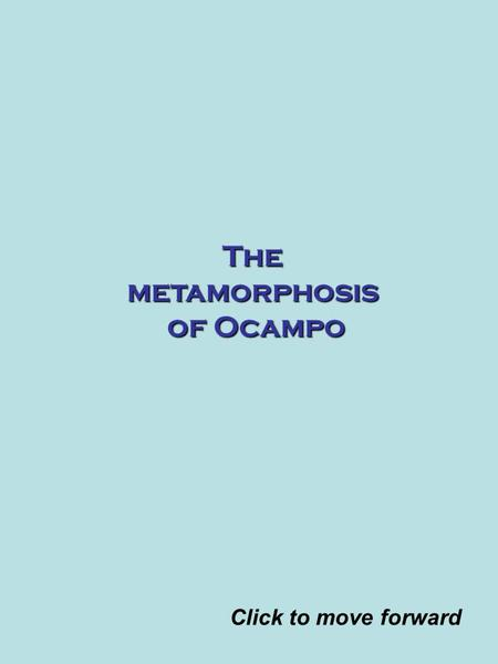 The metamorphosis of Ocampo Click to move forward.