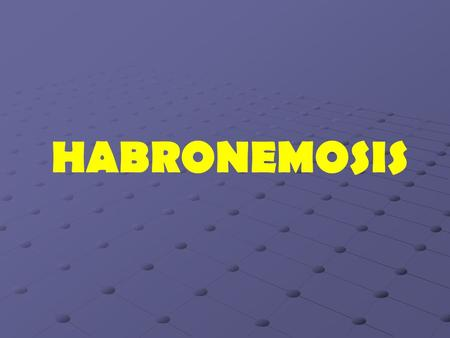 HABRONEMOSIS.