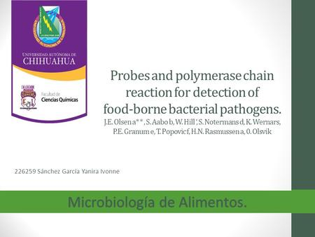 Probes and polymerase chain reaction for detection of food-borne bacterial pathogens. J.E. Olsen a* *, S. Aabo b, W. Hill ', S. Notermans d, K. Wernars,