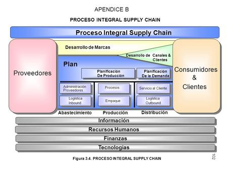Proceso Integral Supply Chain