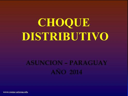 CHOQUE DISTRIBUTIVO ASUNCION – PARAGUAY AÑO 2014 www.reeme.arizona.edu.
