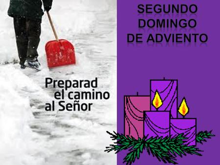 SEGUNDO domingo de adviento.
