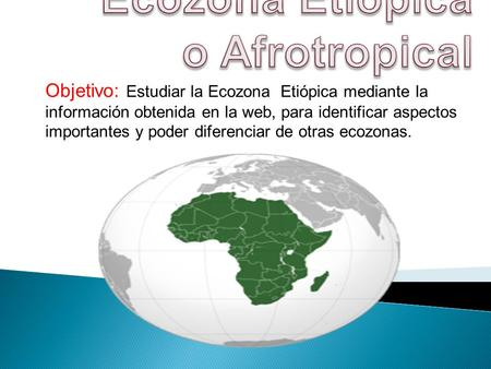 Ecozona Etiópica o Afrotropical