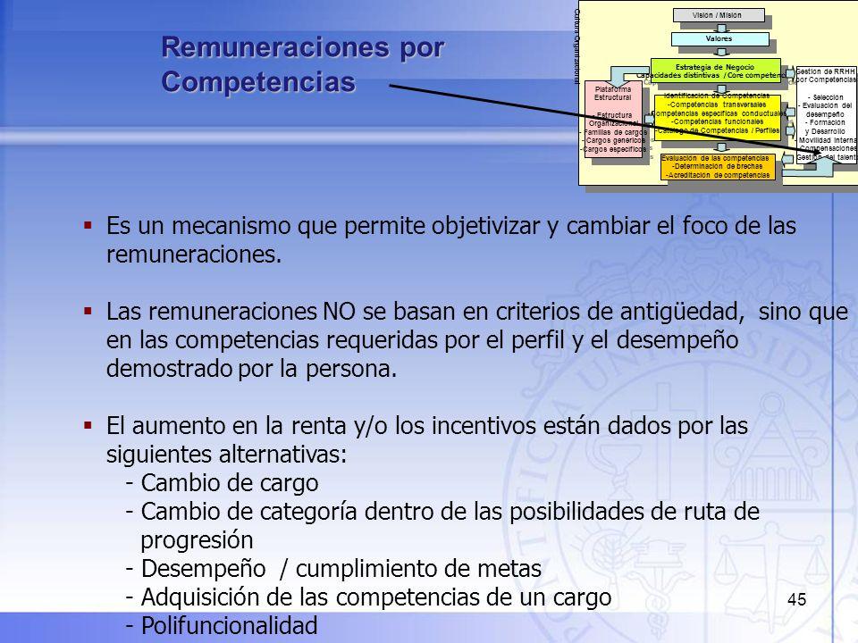 46 Gestión del Talento por Competencias Visión / Misión Estrategia de Negocio Capacidades distintivas /Core competencies Estrategia de Negocio Capacidades distintivas /Core competencies Valores Plataforma Estructural - Estructura Organizacional - Familias de cargos - Cargos genéricos -Cargos específicos Plataforma Estructural - Estructura Organizacional - Familias de cargos - Cargos genéricos -Cargos específicos Identificación de Competencias -Competencias transversales -Competencias específicas conductuales -Competencias funcionales -Catálogo de Competencias / Perfiles Identificación de Competencias -Competencias transversales -Competencias específicas conductuales -Competencias funcionales -Catálogo de Competencias / Perfiles Evaluación de las competencias -Determinación de brechas -Acreditación de competencias Evaluación de las competencias -Determinación de brechas -Acreditación de competencias Gestión de RRHH por Competencias - Selección - Evaluación del desempeño - Formación y Desarrollo - Movilidad interna - Compensaciones - Gestión del talento Gestión de RRHH por Competencias - Selección - Evaluación del desempeño - Formación y Desarrollo - Movilidad interna - Compensaciones - Gestión del talento Cultura Organizacional Los talentos son personas que van más allá del desempeño esperado, demuestran competencias distintivas en relación a otros y poseen un alto potencial de desarrollo, lo que les permite asumir crecientes desafíos y responsabilidades en la organización.