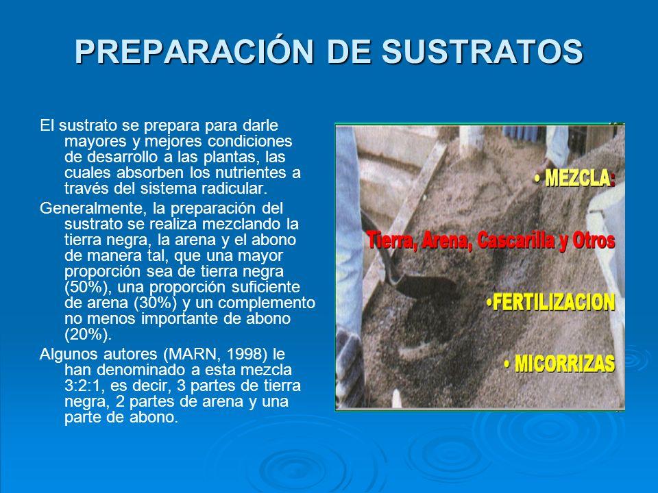 DESINFECCIÓN DE SUSTRATO Algunos productores de plantas acostumbran a desinfectar previamente el sustrato antes de colocarlo en los bancales o envases.