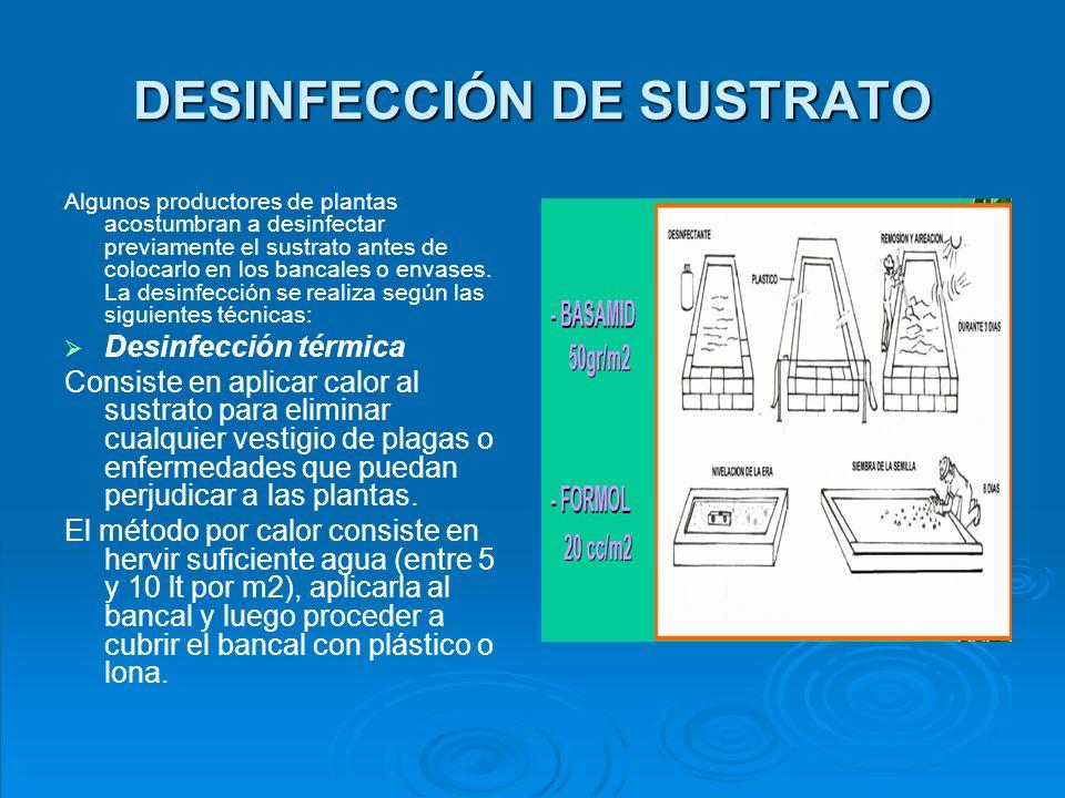 Desinfección Química Consiste en aplicar productos químicos para eliminar cualquier vestigio de plagas o enfermedades que puedan perjudicar a las plantas.