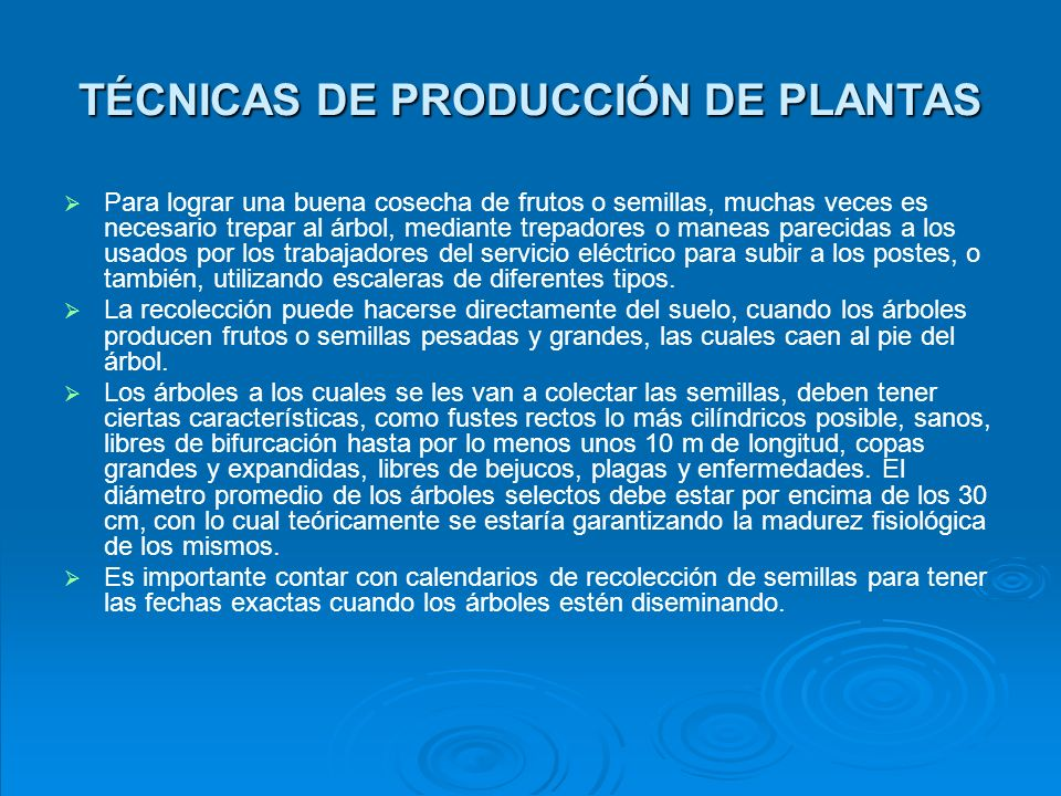 TÉCNICAS DE PRODUCCIÓN DE PLANTAS b.
