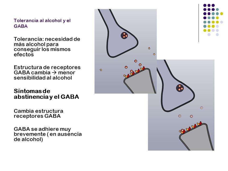 Glutamato en condiciones normales Glutamato: neurotransmisor excitante más importante del cerebro.
