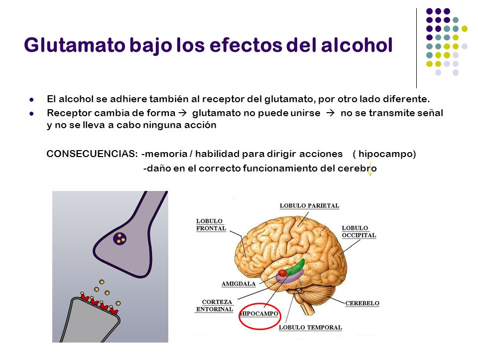 Tolerancia al alcohol y el glutamato -Alcohol bloquea receptores glutamato -Se generan otros adicionales Necesidad de beber más Síntomas de abstinencia y el glutamato -Alcohol ya no bloquea receptores -Además hay receptores adicionales -Sobreestimulación de neuronas