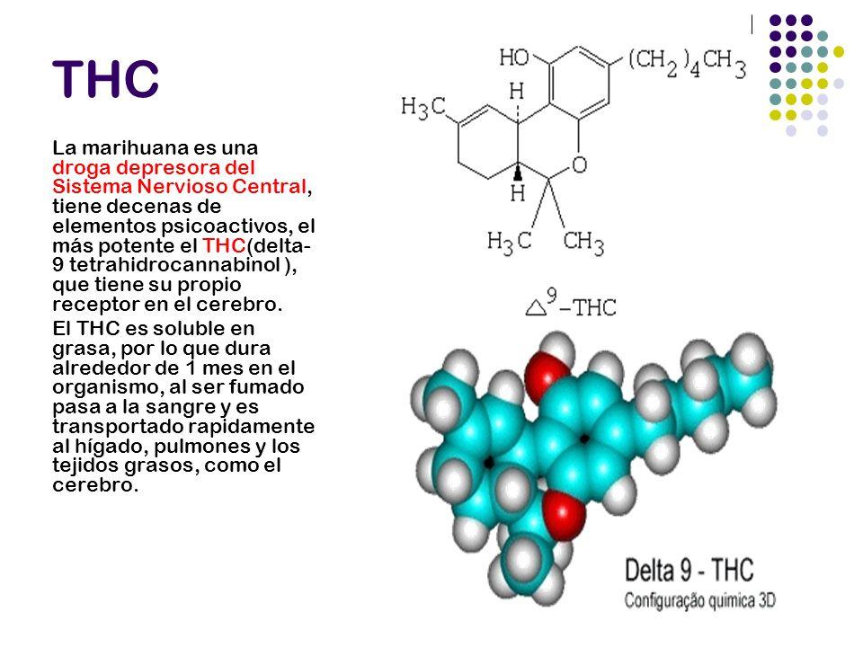 ALGUNOS NEUROTRANSMISORES AFECTADOS GABA Dopamina Anandamida 2-araquidonoilglicerol