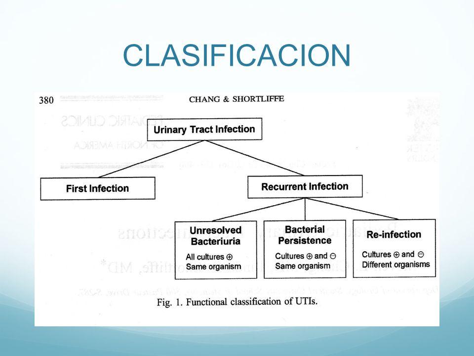 Generalidades Sitio común de infecciones, segunda causa luego de las IVRS.