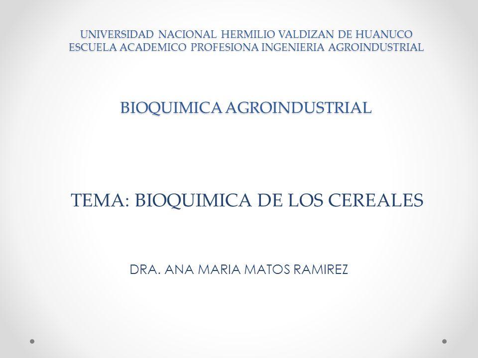 INTRODUCCIÓN INTRODUCCIÓN Cereales, denominación que engloba varias especies de la familia de las Gramíneas cultivadas por sus semillas, que son importantes productos alimenticios.