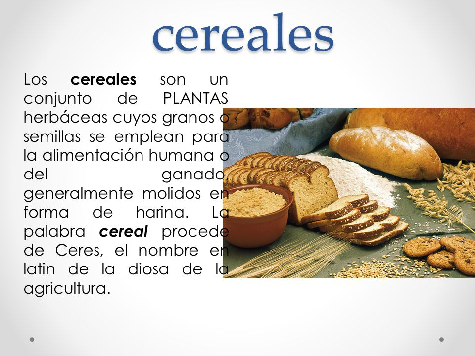 Composición Química Cereales carbohidratos Componentes Nitrogenados lípidos (grasa), minerales, agua incluyen almidón (mayor constituyente), celulosa, hemicelulosa, dextrinas y azucares IMPORTANTE: La composición química próxima de los granos de los cereales varia según las variedades de los cereales