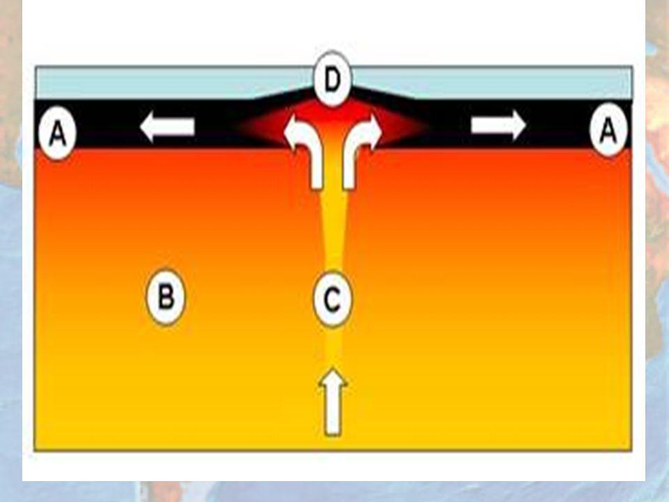 Placas que chocan entre si: Convergentes Las convergentes como lo dice su nombre son las que chocan o convergen una de la otra, es decir las dos placas van en la misma dirección, por este motivo se forma una zona de subducción, es decir se hunde una placa bajo la otra.