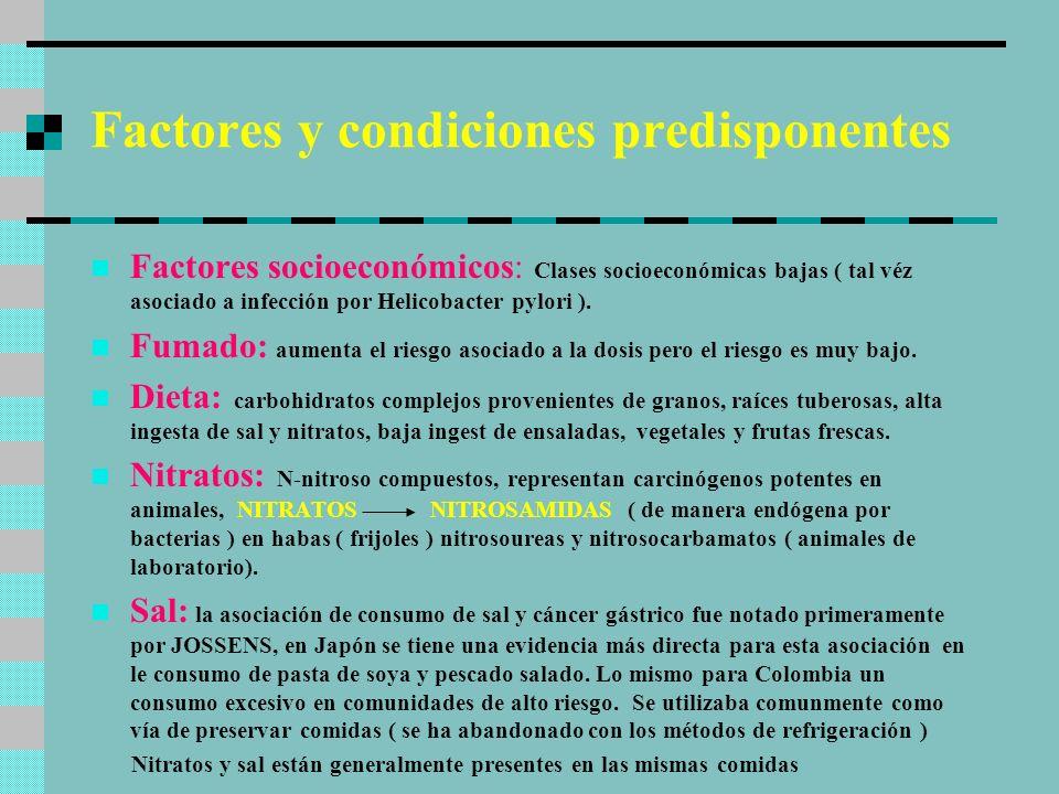 Factores y condiciones predisponentes La sal acentúa la carcinogenicidad de los compuestos nitrosos, correlaciona directamente con la presencia y extensión de la metaplasia intestinal ( precursor ), potencia el efecto de los nitrosos porque daña directamente la mucosa causando incremento en la proliferación celular.