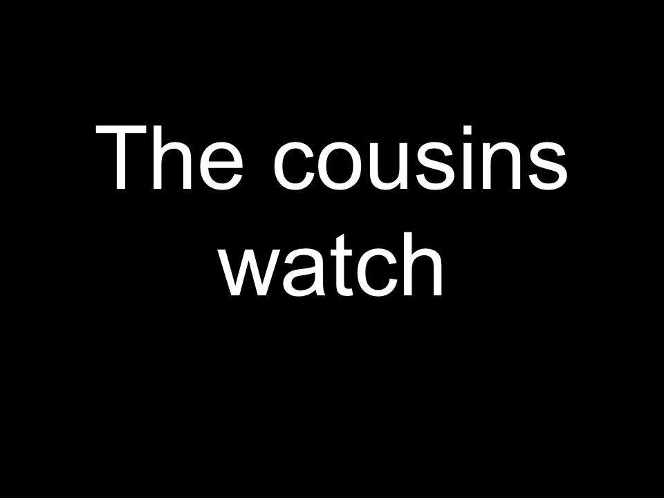 Los primos miran