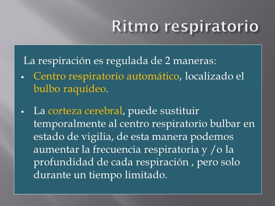Receptores de CO 2 arteriales y bulbares Centro respiratorio (bulbo raquídeo) envían información Vía motora medular (reajusta) Músculos respiratorios (diafragma) Aumenta ritmo a través de estimula Ritmo normal Aumento CO 2 CO 2 normal detectan