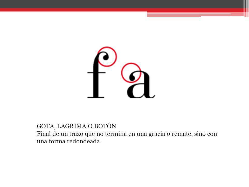 HOMBRO O ARCO Trazo curvo que sale del asta principal de algunas letras sin acabar cerrándose.