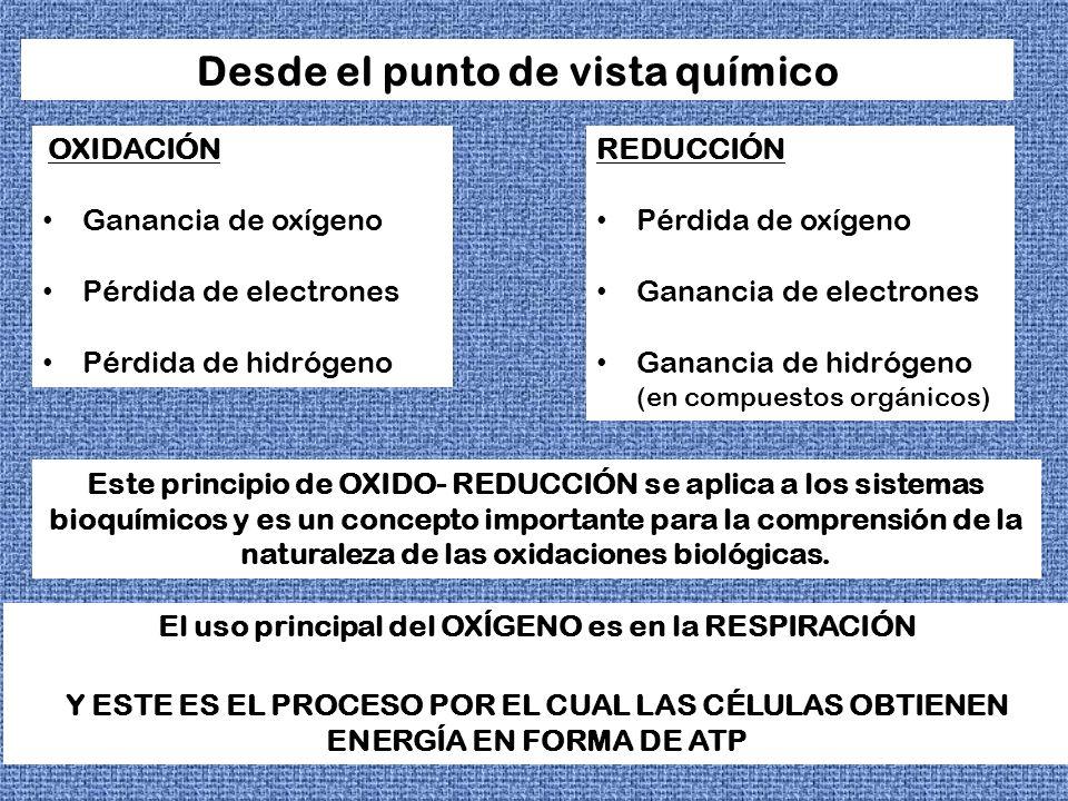 EN LOS SISTEMAS REDOX LOS CAMBIOS DE ENERGÍA LIBRE PUEDEN EXPRESARSE EN TÉRMINOS DEL POTENCIAL DE OXIDACIÓN – REDUCCIÓN LAS ENZIMAS QUE INTERVIENEN EN LOS PROCESOS REDOX SE DENOMINANOXIDORREDUCTASAS