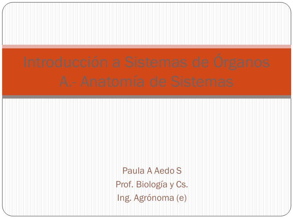 Paula A Aedo S Prof.Biología y Cs. Ing.