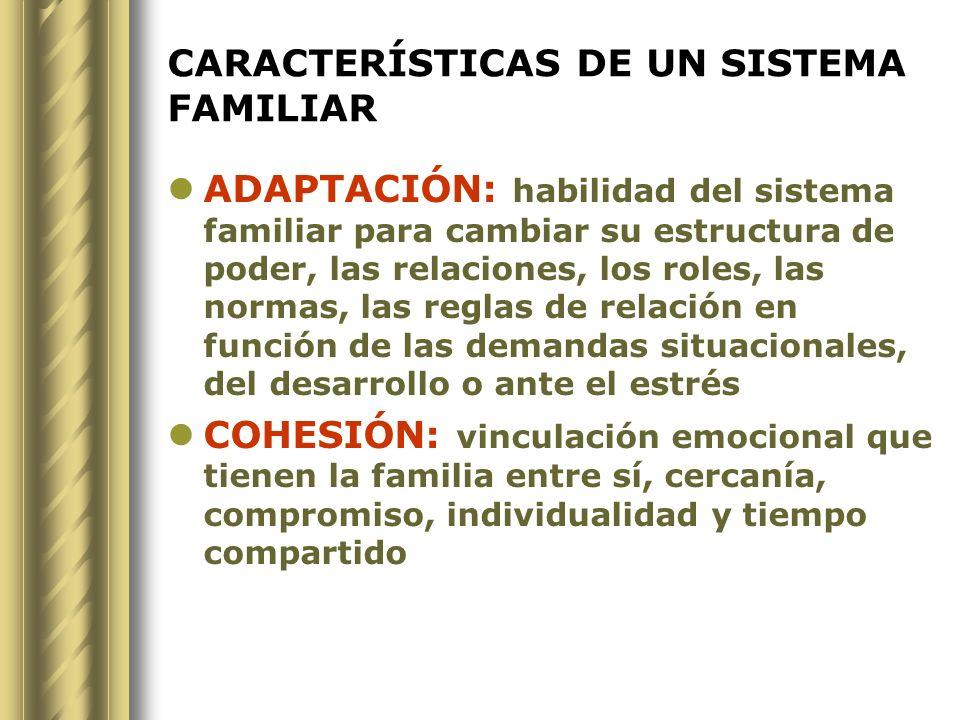 CARACTERÍSTICAS DE UN SISTEMA FAMILIAR SISTEMA ABIERTO : al ecosistema, en adaptación dinámica para la sobrevivencia.