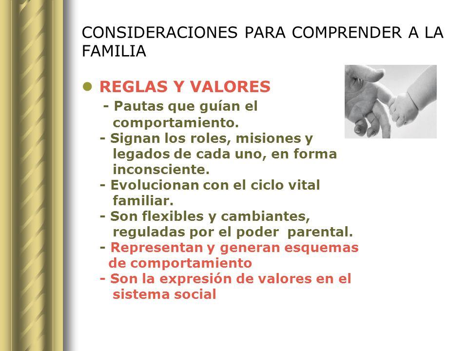 CONSIDERACIONES PARA COMPRENDER A LA FAMILIA SECRETOS DE FAMILIA: Ej.