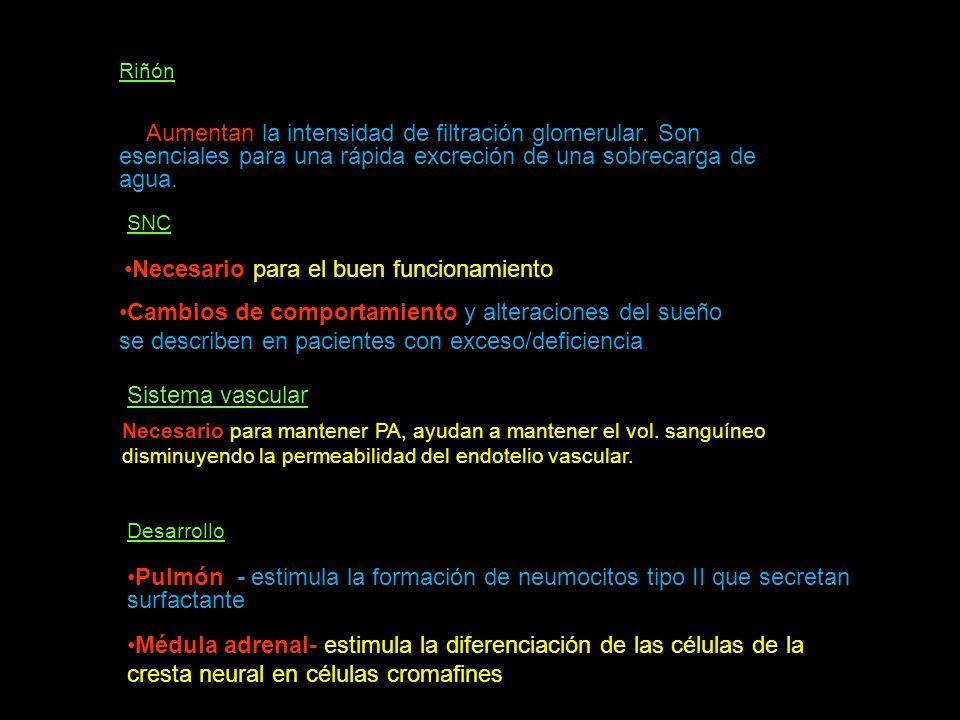 transcortina