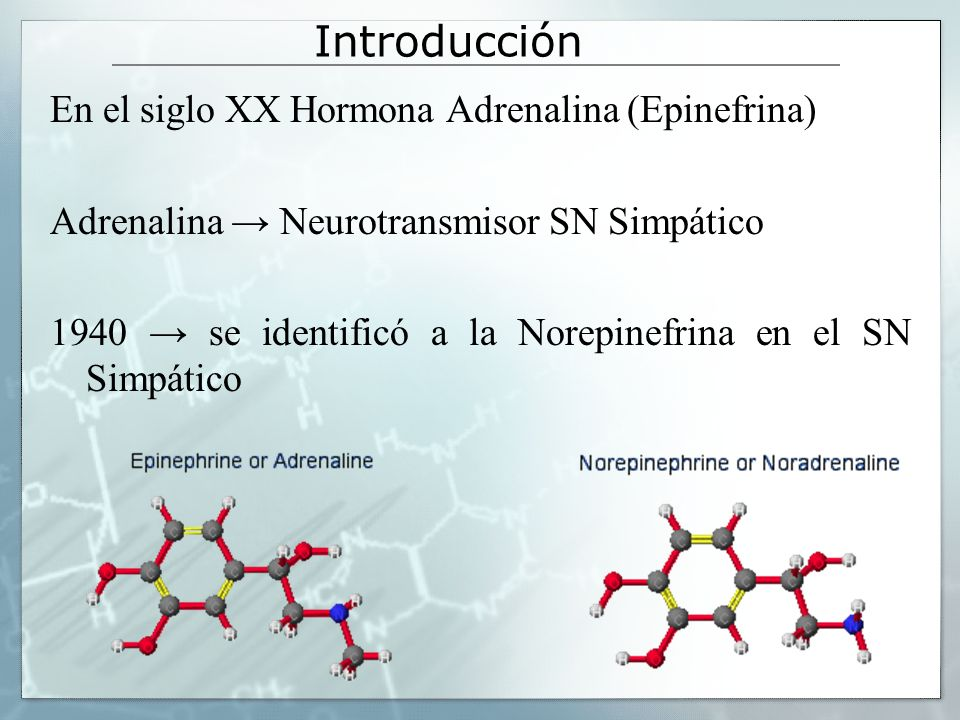 Introducción Norepinefrina R = H Epinefrina R = CH3 Norepinefrina y Epinefrina Catecolaminas