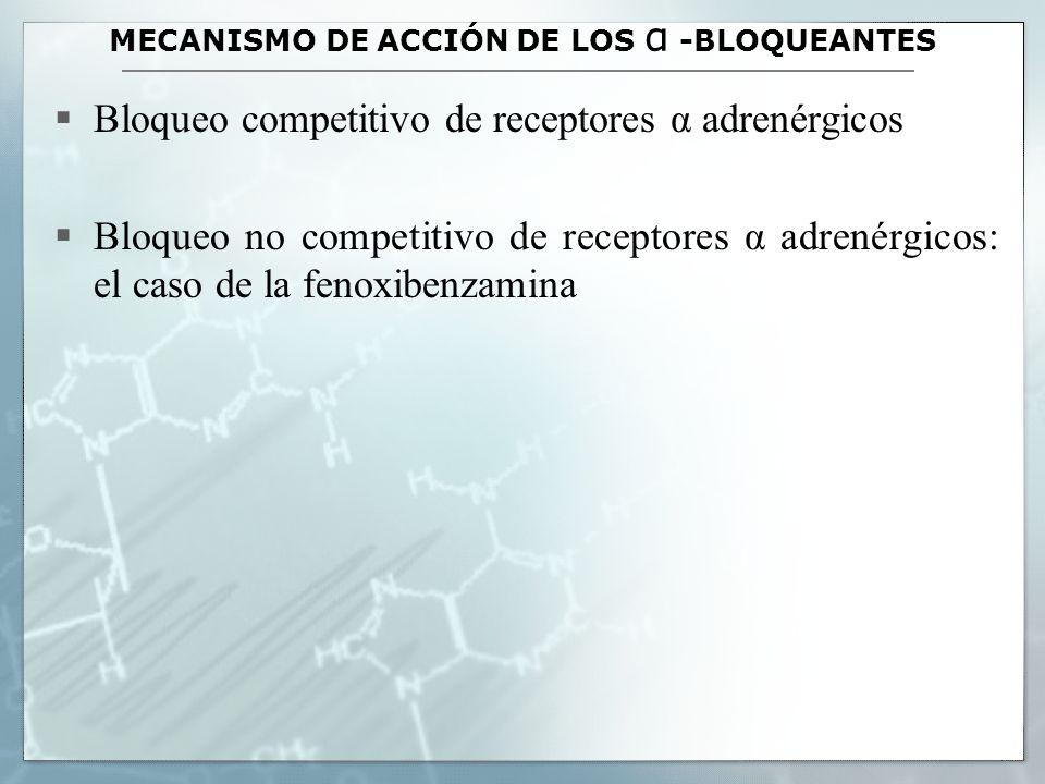 ACCIONES CARDIOVASCULARES DE LOS ALFA-ANTAGONISTAS Dependen del tono simpático basal Inhibición de las respuestas presoras inducidas por aminas simpaticomimética selectivas y no selectivas: el fenómeno de reversión de la respuesta presora a la adrenalina (Henry Dale) El problema de la vasodilatación, la hipotensión y la taquicardia refleja (baroreceptores) con: - Bloqueantes α no selectivos - Bloqueante α1 selectivos El tema de los receptores presinápticos α2 (clonidina, yohimbina)