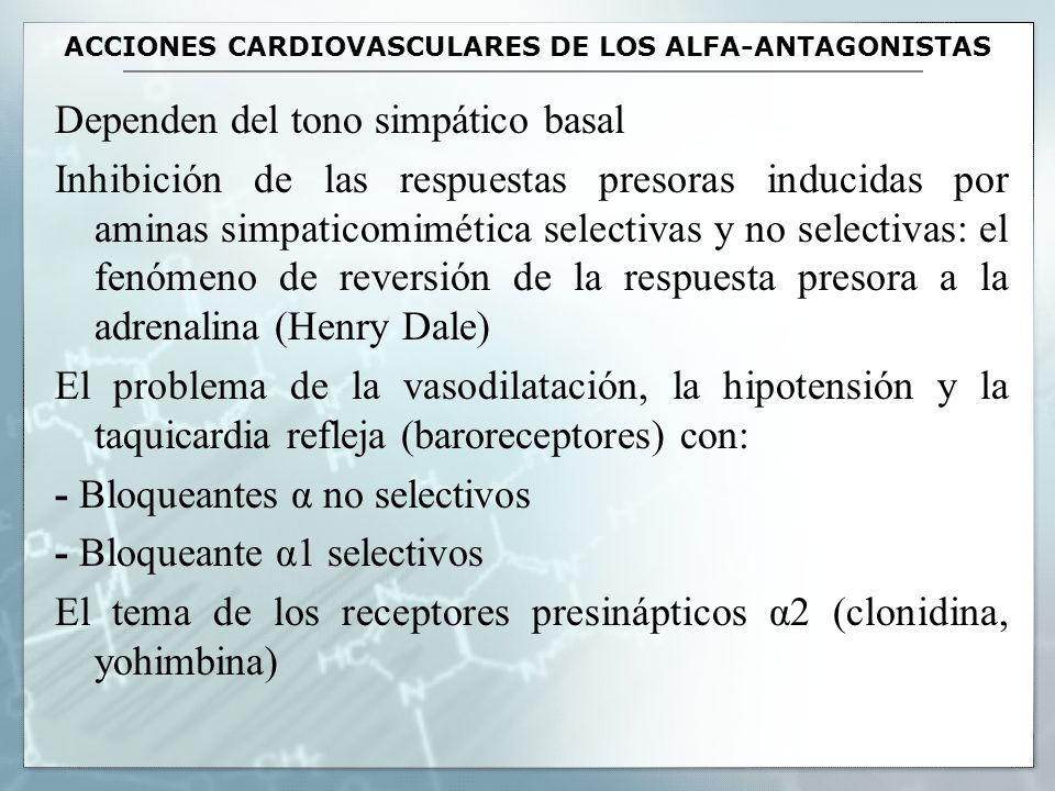 ACCIONES NO CARDIOVASCULARES DE LOS α ANTAGONISTAS Relajación de los músculos del trígono y esfinter vesicales, con disminución de la resistencia al flujo urinario (hipertrofia benigna de próstata).