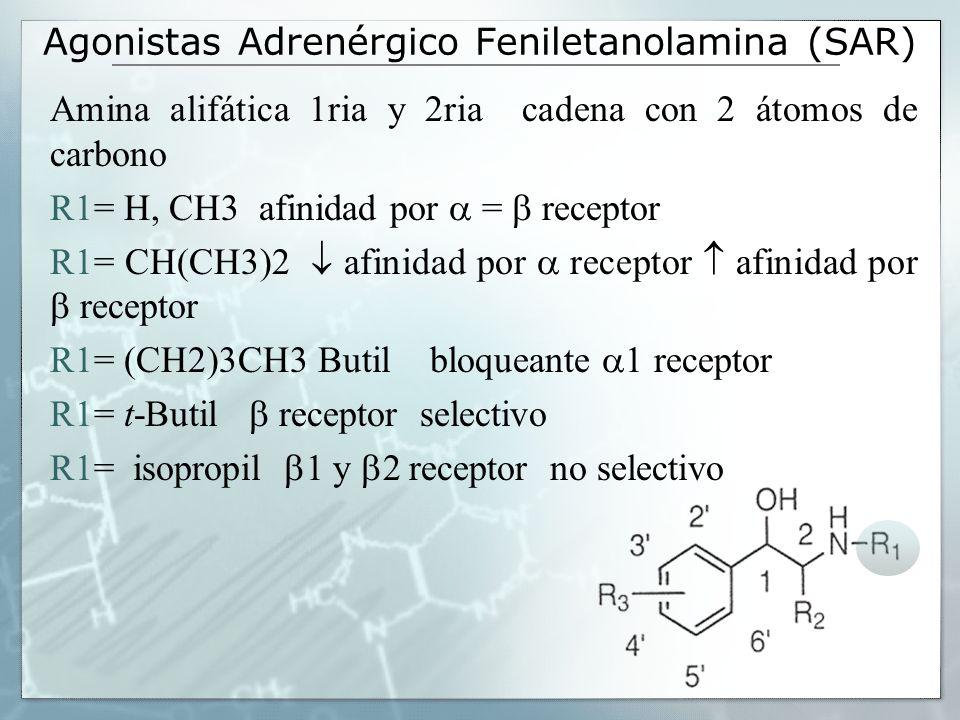 Agonistas Adrenérgico Feniletanolamina (SAR) R2= metabolismo mas lento por parte de la MAO R2= etil- afinidad receptor afinidad receptor R2= 1R, 2S-CH3 afinidad 2 receptor 1 receptor -metildopa antihipertensivo