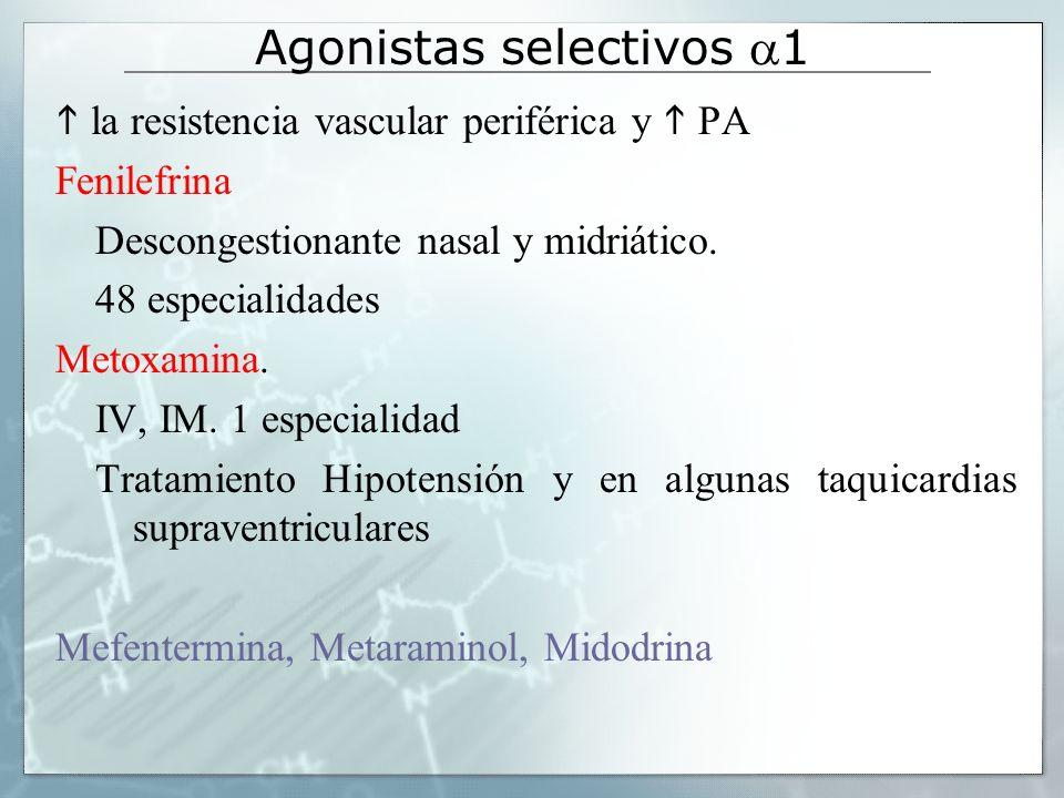 Agonistas selectivos 1 Estimula el músculo liso vascular, mantenimiento de la presión arterial