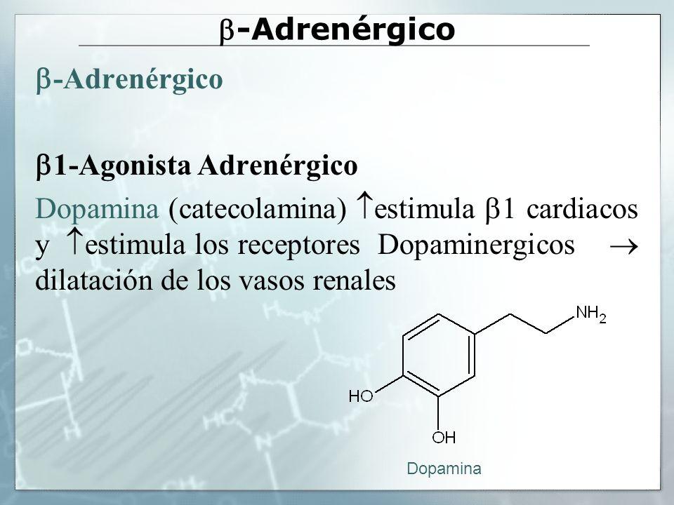 Agonistas 2 selectivos: ASMA Salbutamol (Salbutamol, Ventolin, Airomir, Aldobronquial, Respiroma, Aerosoma, Butoasma, Butosol, Ventadur, Emican, Dipulmin, Asmasal) Terbutalina (Terbasmin, Tedipulmo) Orciprenalina (Alupent) Fenoterol (4-6 horas) (Berotec) Formoterol (hasta 12 horas) (Oxis, Neblik, Broncoral, Foradil) Salmeterol (hasta 12 horas) (Betamican, Beglan, Inaspir, Serevent)