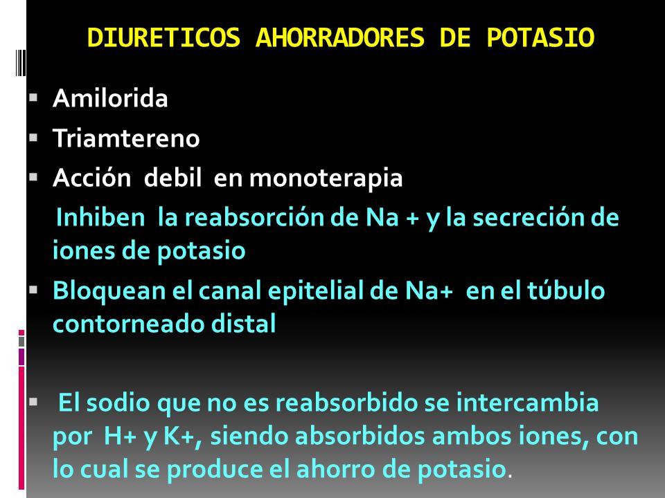ESPIRONOLACTONA Inhibe competitivamente la acción de la aldosterona en el tubulo contorneado distal del riñón.