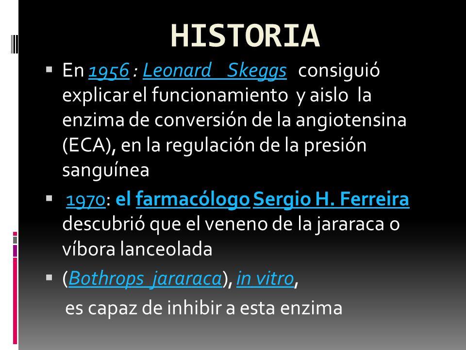 HISTORIA En 1974 se describió por primera vez el inhibidor ECA captopril.1974 En 1981 ésta fue la primera sustancia que se empleó como inhibidor ECA en un tratamiento.1981 Dos años más tarde siguió la comercialización de un segundo inhibidor ECA con el enalapril.