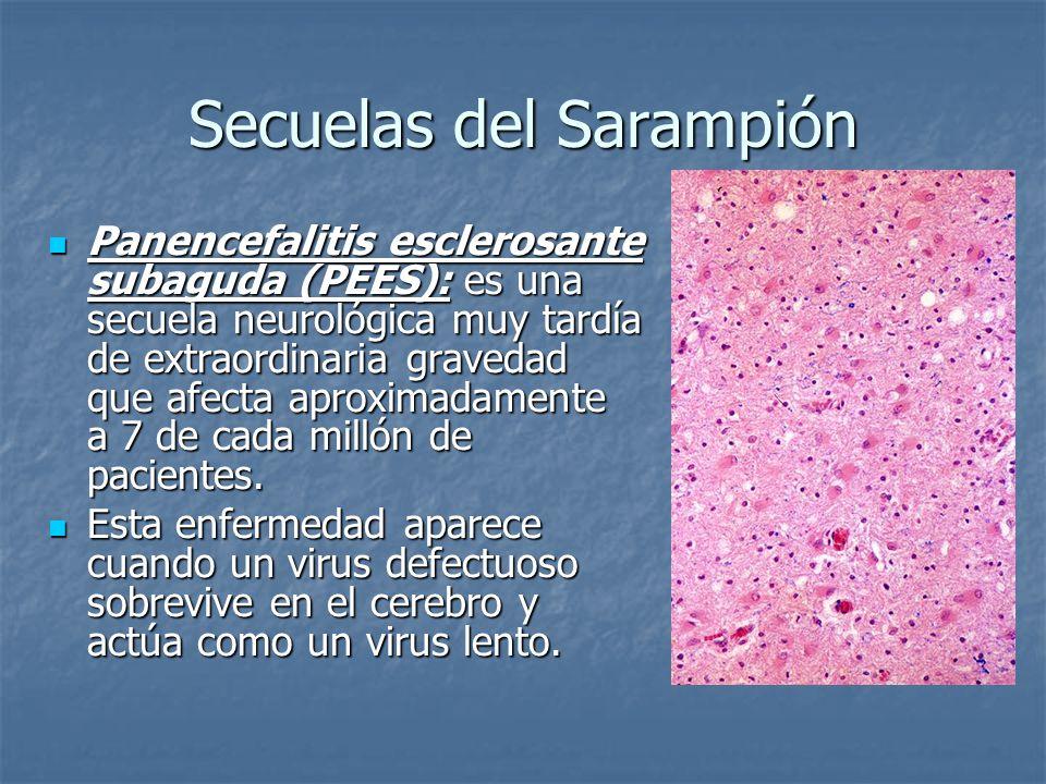 Secuelas del sarampión (PEES) El virus se puede multiplicar y diseminarse de una célula a otra pero no se libera.