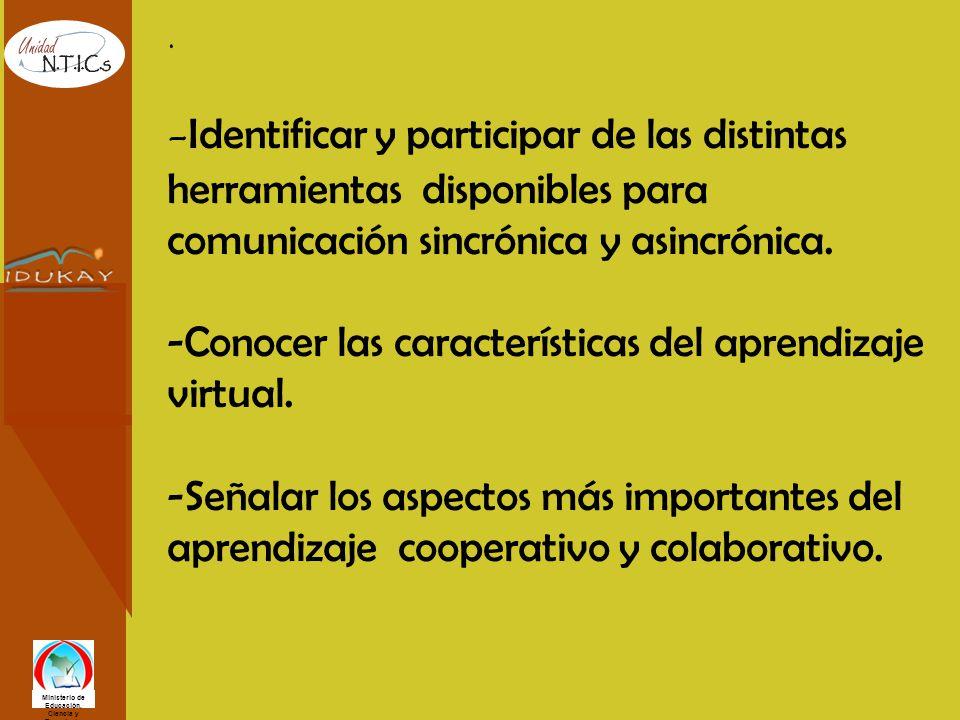 Ministerio de Educación, Ciencia y Tecnología Aula Virtual IDUKAY Usted verá la pantalla de ingreso o entrada.
