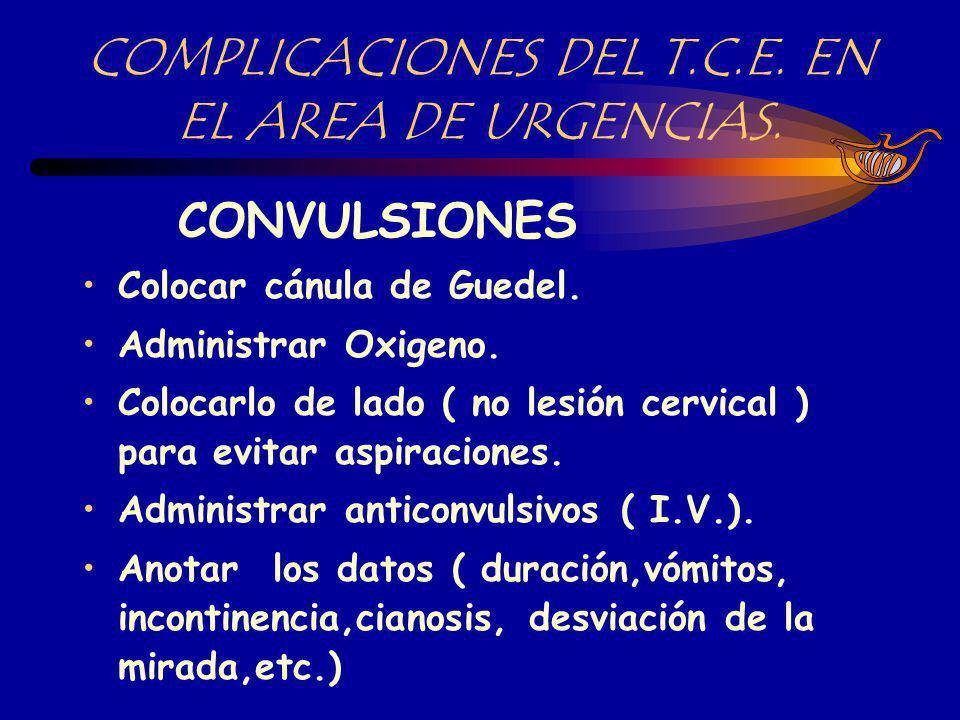 N.º DE T.C.E. EN EL AÑO 1999.