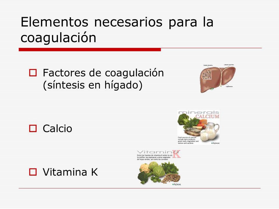 Anticoagulantes Naturales (fisiológicos) Factores físicos (flujo alto y baja viscosidad) Mecanismos fisiológicos (endotelio vascular) Fibrinolisis (disolución del coágulo) Artificiales (farmacológicos) Quitar el calcio (sólo en el laboratorio) Inactivar factores de la coagulación (Heparina) Alterar la síntesis de factores de coagulación: Antagonistas de la vitamina K (Sintron®)