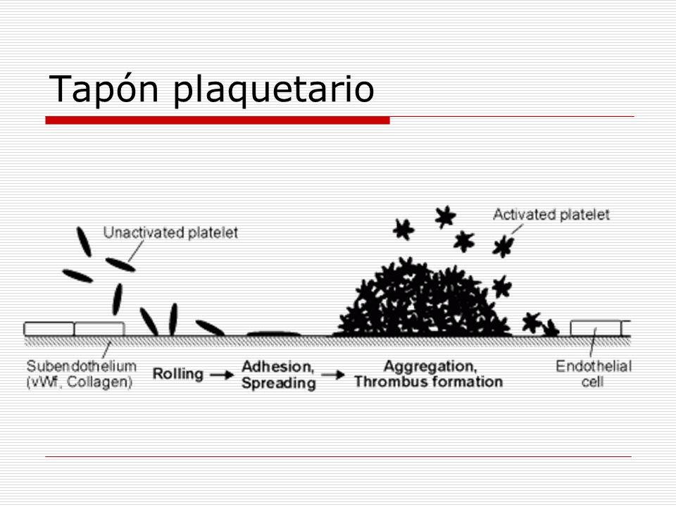Antiagregantes plaquetarios Fisiológicos: Factores endoteliales Óxido nítrico Prostaciclina (PGI 2 ) Farmacológicos: Salicilatos (Aspirina®) Inhiben la formación de TXA 2