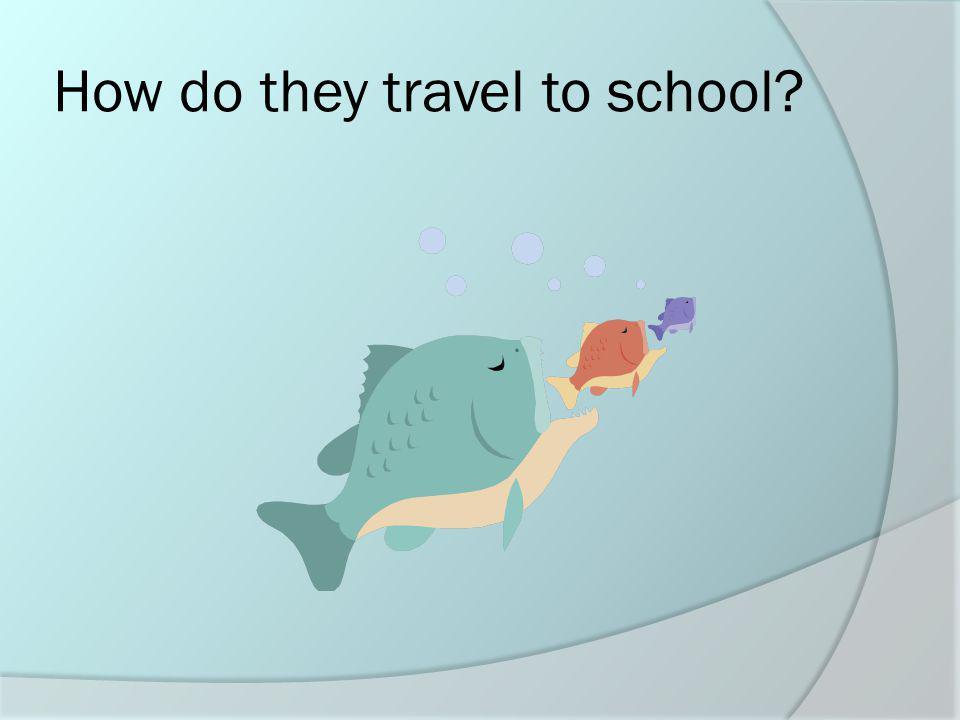 En bus escolar