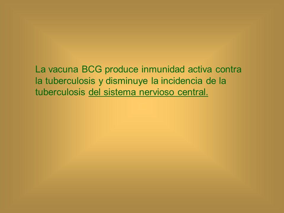 LA VACUNA BCG Se debe administrar desde recién nacidos, hasta los 14 años de edad.