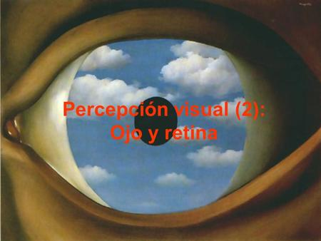 Percepción visual (2): Ojo y retina.