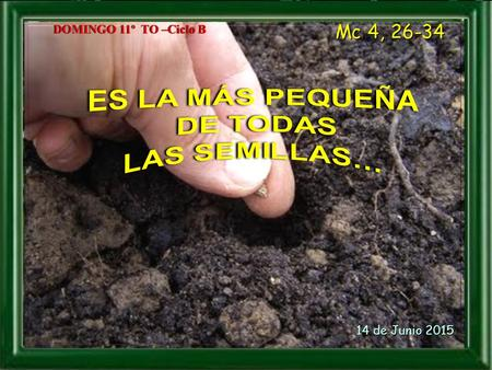 DOMINGO 11º TO –Ciclo BDOMINGO 11º TO –Ciclo B Mc 4, 26-34 14 de Junio 2015 14 de Junio 2015.
