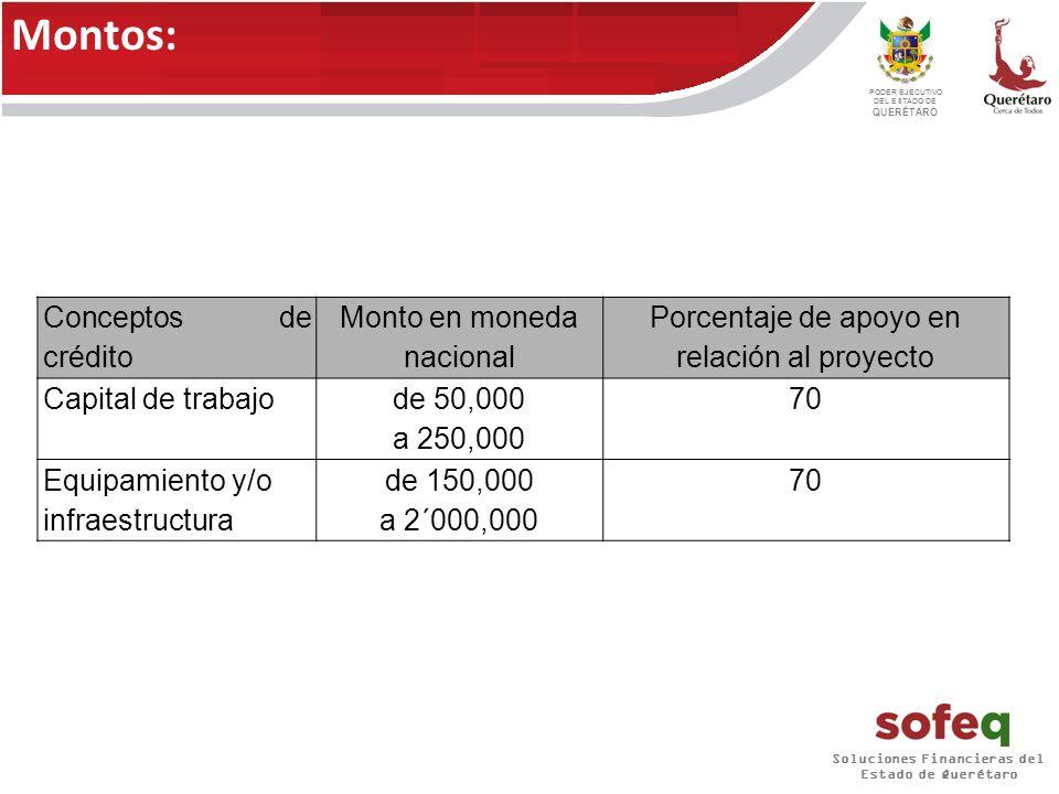 Soluciones Financieras del Estado de Querétaro PODER EJECUTIVO DEL ESTADO DE QUERÉTARO El plazo máximo para que el acreditado amortice el crédito será como sigue: Capital de trabajo: Hasta 36 meses.