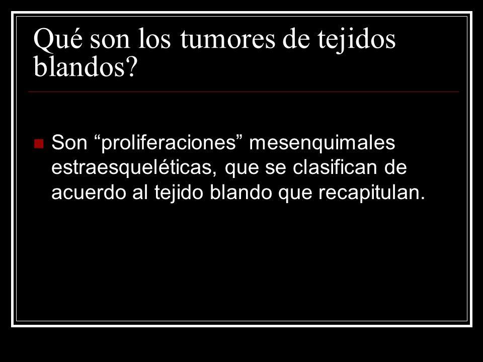 Clasificación histológica Adipocíticos / lipomatosos Fibroblásticos / miofibroblásticos Fibrohistiocíticos Musculares Vasculares De diferenciación incierta