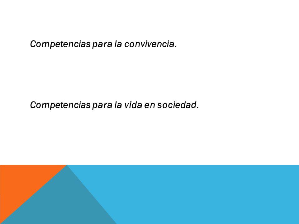 COMPETENCIAS DOCENTES CAMPO LABORAL 1.Organizar y animar situaciones de aprendizaje.