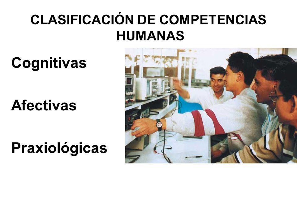 CLASIFICACIÓN DE COMPETENCIAS COGNITIVAS AFECTIVAS PRÁXICAS -------------------------- INSTRUMENTALES INTERACCIÓN SOCIAL INTEGRADORAS ( O SISTÉMICAS) BÁSICAS GENÉRICAS ESPECÍFICAS ------------------------ ACADÉMICAS OPERACIONALES PROFESIONALES