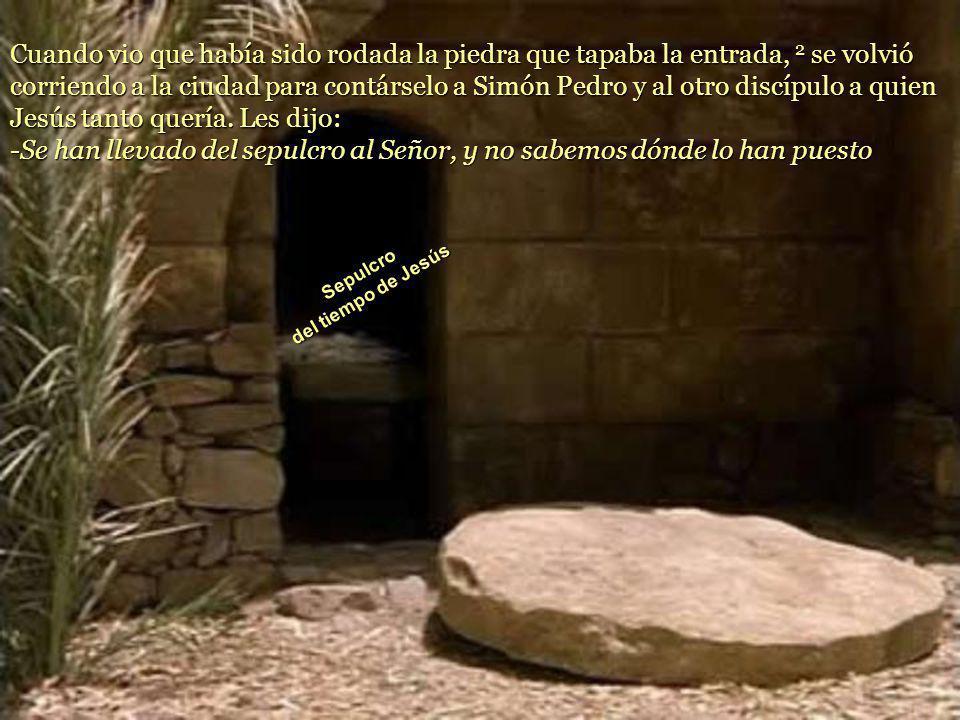 Cuando vio que había sido rodada la piedra que tapaba la entrada, 2 se volvió corriendo a la ciudad para contárselo a Simón Pedro y al otro discípulo a quien Jesús tanto quería.