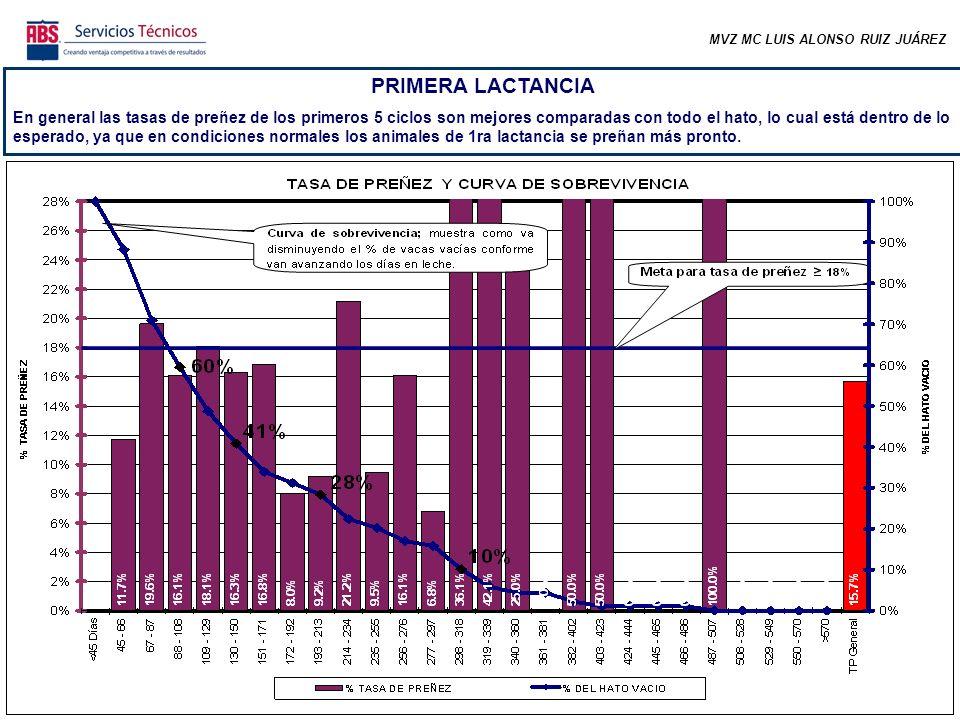 MVZ MC LUIS ALONSO RUIZ JUÁREZ PRIMERA LACTANCIA Hay mejor distribución de los animales gestantes de primera lactancia comparado con todo el hato.